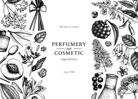 Banner with fragrant fruits sketched perfumery and cosmetics ingredients illustration. Ilustracja