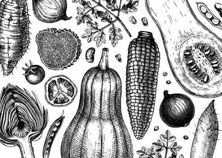 Hand-sketched vegetables vector background. Healthy food ingredients banner template. Vintage vegetables, herbs, mushrooms illustrations for menu, web banner, recipes, branding.