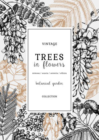 Vector card or invitation with hand-sketched trees in flowers. Vintage illustrations on blooming wisteria, mimosa, albizia, acacia. Floral design in retro style