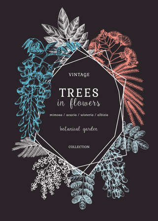 Vector banner with hand-sketched trees in flowers. Vintage illustrations on blooming wisteria, mimosa, albizia, acacia. Floral card or invitation design in chalkboard style
