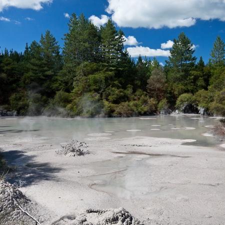 anomalous: Geothermal area at Wai-O-Tapu, Rotorua, North Island, New Zealand.