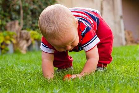 Toddler discovering nature. Little boy playing in the garden. photo