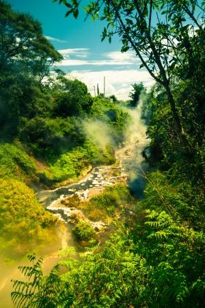 new scenery: Beautiful green nature and steaming stream, Geothermal area at Wai-O-Tapu, Rotorua, North Island, New Zealand.