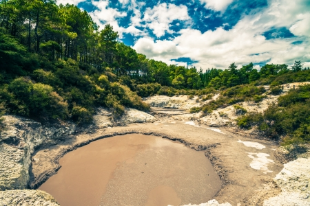 Thermal mud pool at Wai-O-Tapu, Rotorua, North Island, New Zealand. photo
