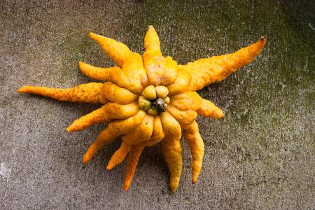 asian produce: Buddhas hand citrus fruit