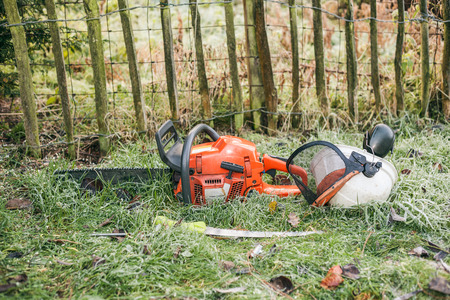 handsaw: Chainsaw and pruning handsaw lying in the garden.