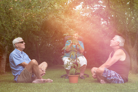 Seniors relaxing with Cannabis plant outdoors in the garden.