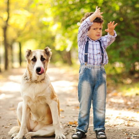 ittle cute boy playing with his dog in the autumn park Stock Photo