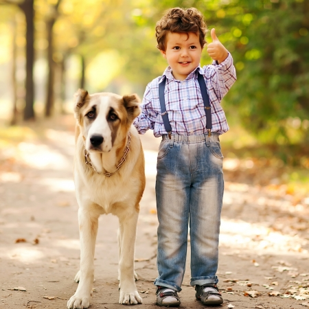 autumn dog: Little boy playing with his dog