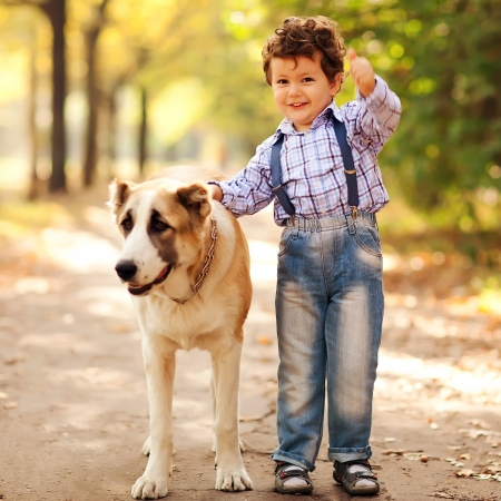 male animal: little cute boy playing with his dog in the autumn park