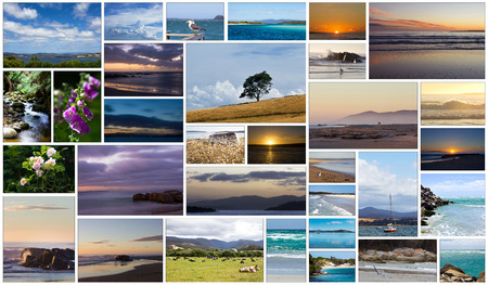 collage of photos of tasmanian nature, Australia