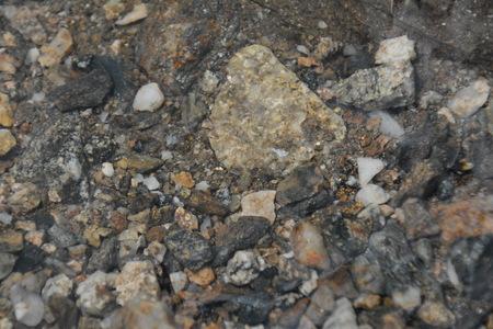 flecks of gold in rocky stream Imagens