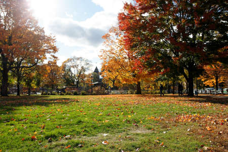 A view of the Cambridge Common in Indian Summer.