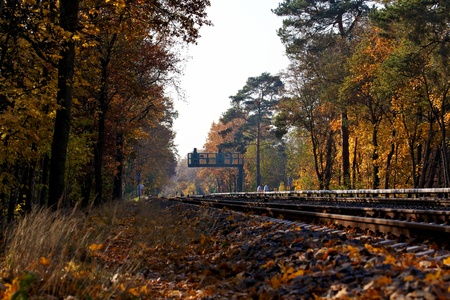 A Fall forest landscape with railroad tracks running through and a signal in the distance in Berlin, Germany.