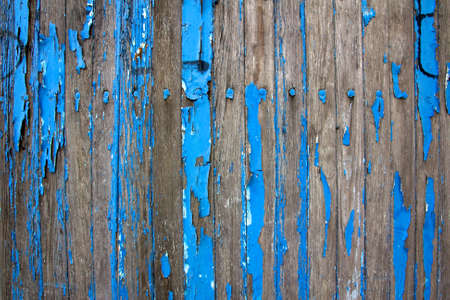 flaking: Detail on a weathered wooden shed, remnants of vibrant blue paint flaking from the decaying wood