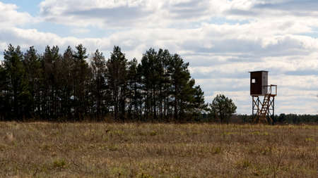 Line of trees and raised blind at a meadow  Stock Photo
