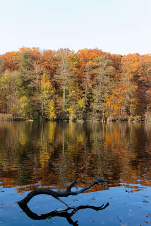 Fall colors reflecting upon the still waters of Lake Schlachtensee in Berlin, Germany. photo
