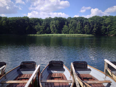 rowboats: Rowboats on the Lake