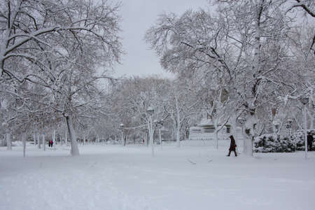 Cambridge Common park near Harvard University campus in Cambridge, MA, USA covered in snow after a blizzard  photo
