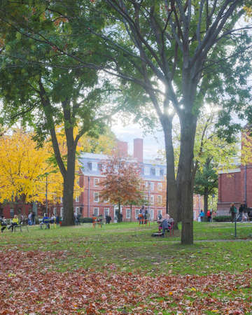 harvard university: CAMBRIDGE, MA, USA - NOVEMBER 2, 2013  Harvard Yard, old heart of Harvard University campus, on a beautiful Fall day in Cambridge, MA, USA on November 2, 2013