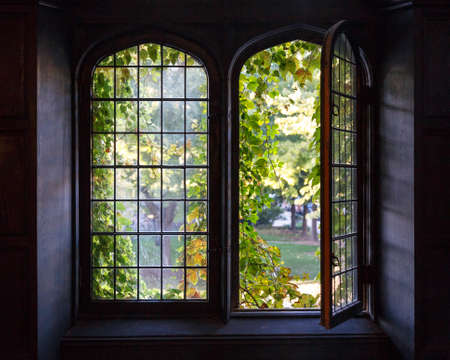Light spills through a half-open window at a university building in Chicago, IL, USA in early Fall 2014. photo