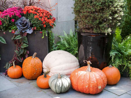 front stoop: Tasteful home decorations welcoming the fall season.