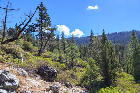 mountainscape: Mountainscape on the California side of the Sierra Nevada. Stock Photo