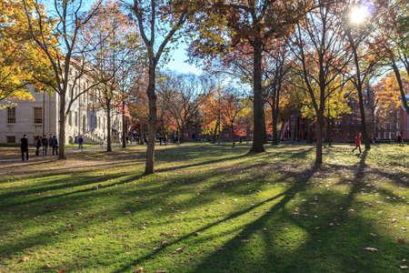 harvard university: Harvard Yard, old heart of Harvard University campus, on a beautiful fall day in Cambridge, MA, USA on November 12, 2010.