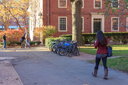 harvard university: CAMBRIDGE, MA, USA - NOVEMBER 12, 2010: Student walking through Harvard Yard, old heart of Harvard University campus, in Cambridge, MA, USA on November 12, 2010.