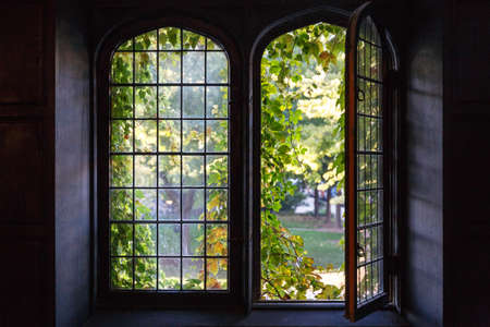 il: Light spills through a half-open window at a university building in Chicago, IL, USA in early Fall 2014.