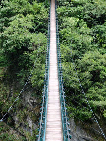 national forests: Hanging bridge leading into the thick green jungle.