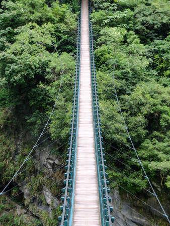 jungla: Puente colgante que lleva en la espesa selva verde. Foto de archivo