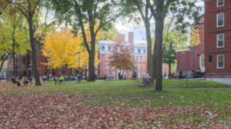 ivy league: Blurred background of Harvard Yard on a beautiful Fall day in Cambridge, MA, USA.