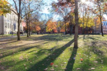 Blurred background of Harvard Yard on a beautiful Fall day in Cambridge, MA, USA.