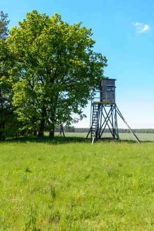 hunter's: Hunters raised blind in a summer meadow in Germany.