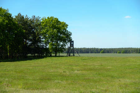 treeline: View of the countryside near Berlin, Germany in summer. Stock Photo