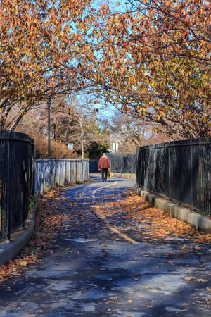 Fall landscape in a park in Bay Ridge, Brooklyn, New York, NY, USA in 2014.