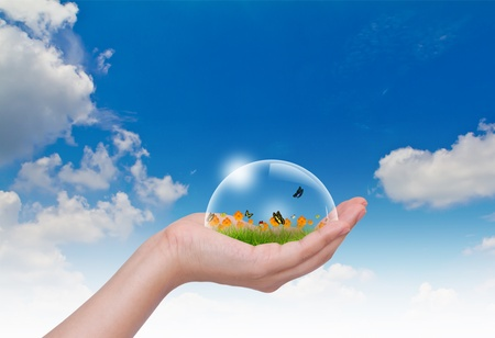 Hand hold Bubbles with flower on grass and butterfly in the sky photo
