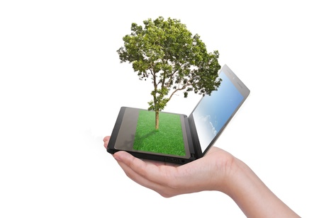 Human hand holding notebook and tree with grass on keypad photo