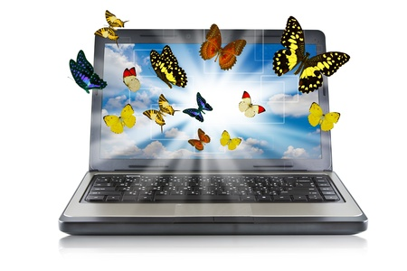 designer working: Butterfly reaches out of Laptop