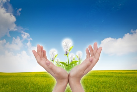 women hand with Light bulb over blue sky and green grass Stock Photo - 10944816