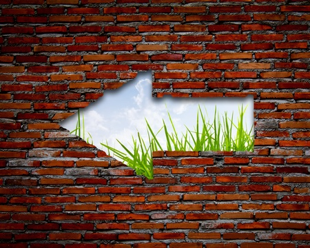 to break through: Brick wall with left arrow , grass and sky Stock Photo