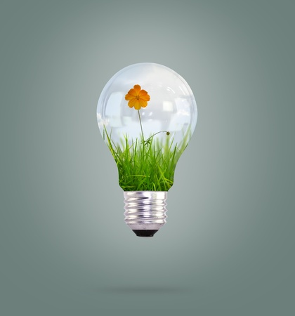 light bulb with beautiful flower inside Stock Photo - 11489490