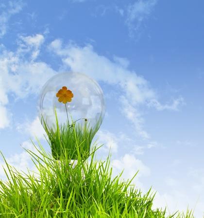 light bulb with beautiful flower inside photo