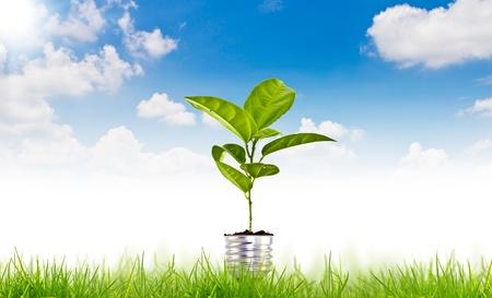 青い空に緑エネルギー シンボル 写真素材