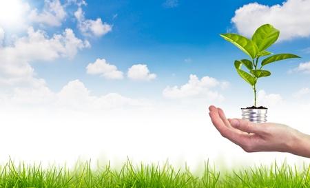energy saving: Símbolo de la energía verde sobre el cielo azul