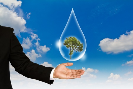 Eco concept : tree in water drop against the sun and the blue sky Stock Photo - 11489536