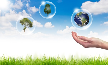 Eco concept : globe , tree in bubbles against the sun and the blue sky photo