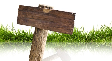 wood lawn: Wood sign and grass with reflection isolated on a white background.