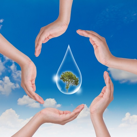 Eco concept : Hand hold water drop with tree inside against the sun and the blue sky photo